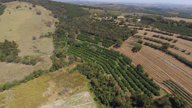 Agricultura Prânica Pranic Agriculture