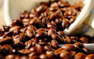 Alimentos e bebidas que contêm mais cafeína